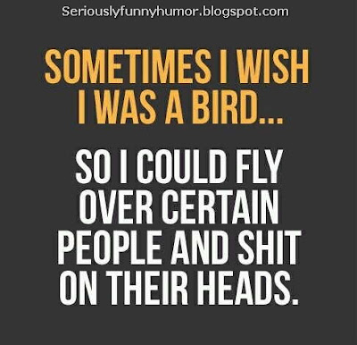 sometimes-wish-i-was-a-bird-shit-on-peoples-heads