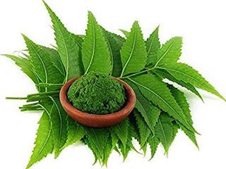 Control diabetes with neem