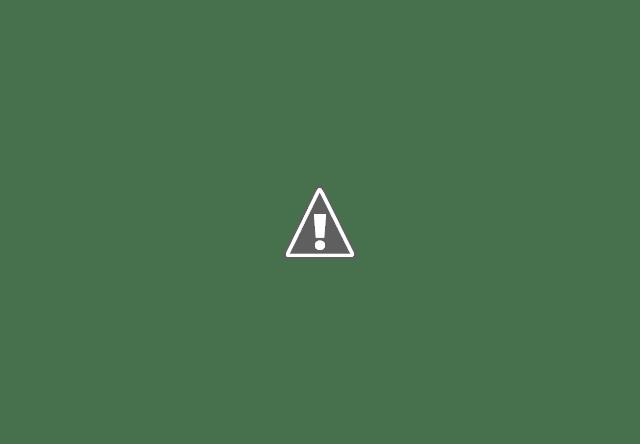 Cara Merawat Ikan Koi di Kolam Terbuka