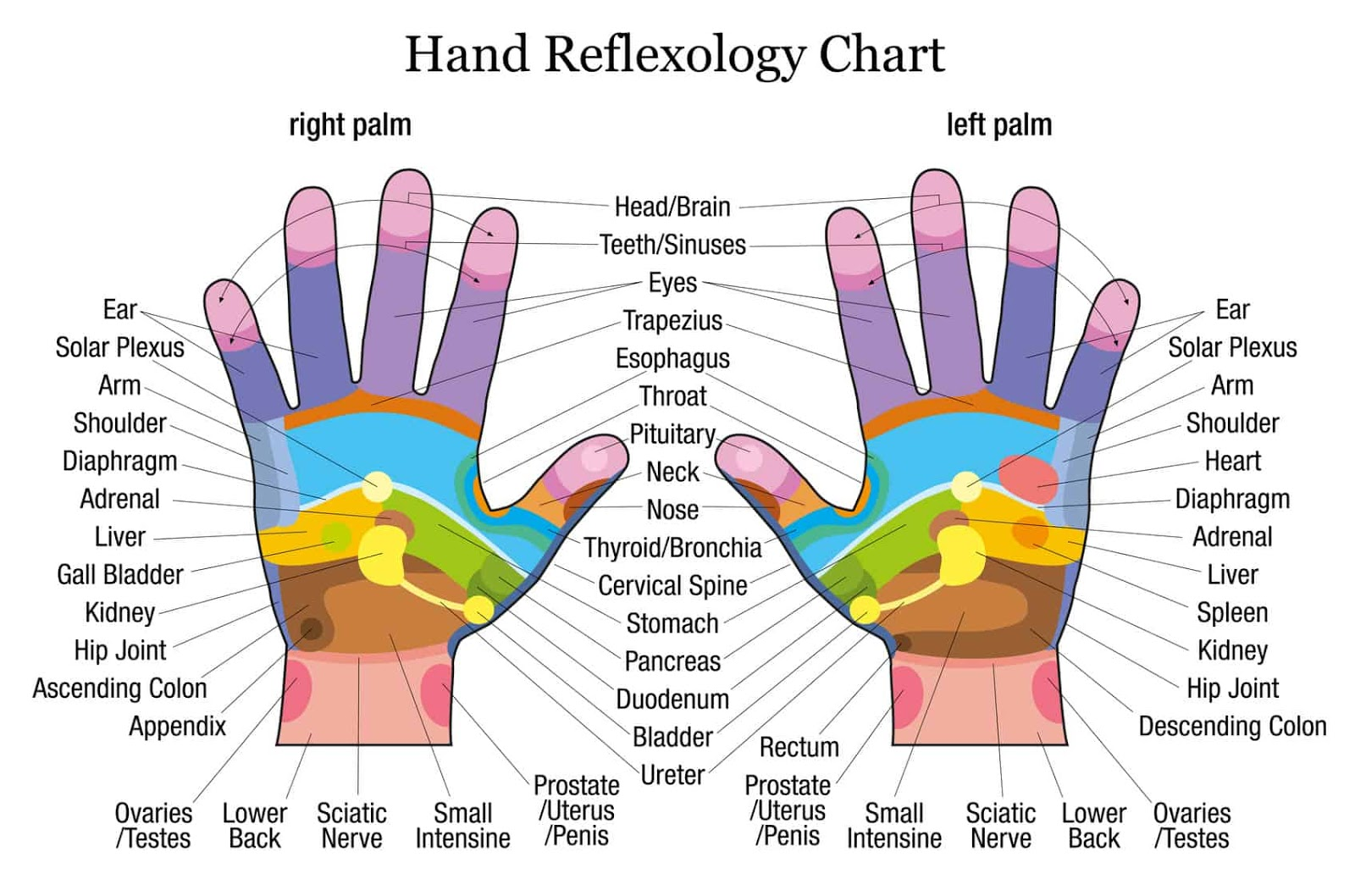 Acupressure: Tap These Points Of Your Hand To Treat The Pain