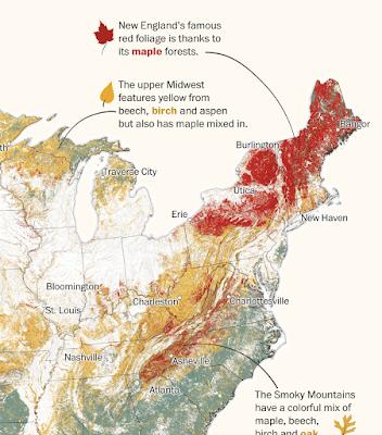 https://www.washingtonpost.com/graphics/2019/national/fall-foliage-atlas/