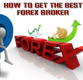 Im a forex trading investor traduction