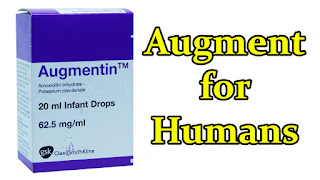augmentin-drops-treat-bacterial-infections-in-humans
