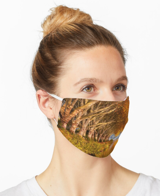 Autumn Vibes - Autumn Lake Trees Mask | Redbubble gifts