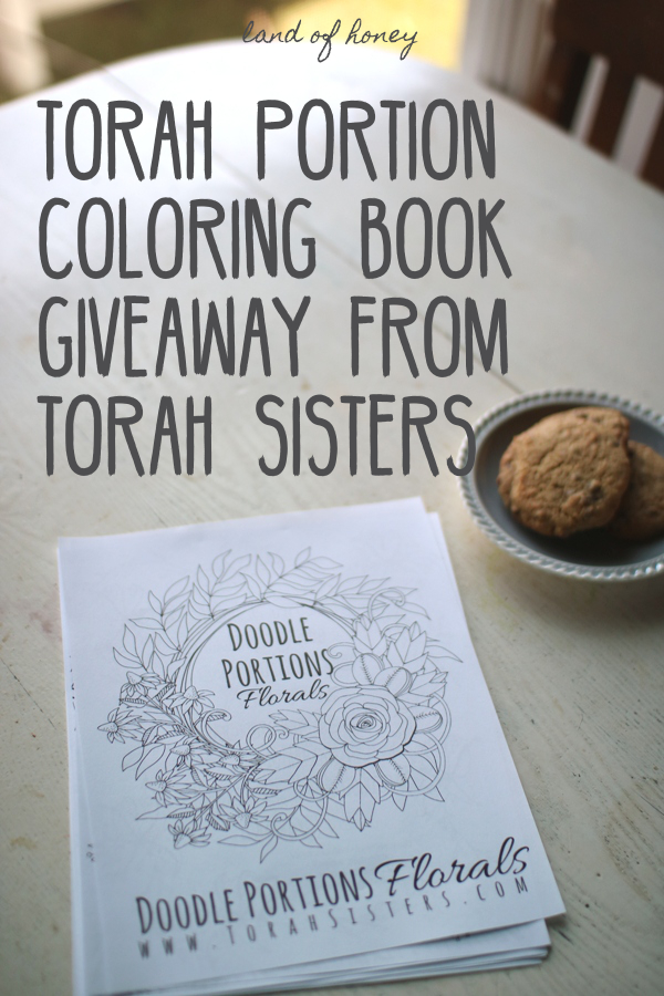Win a copy of Doodle Portions - a Torah portions coloring book | Land of Honey