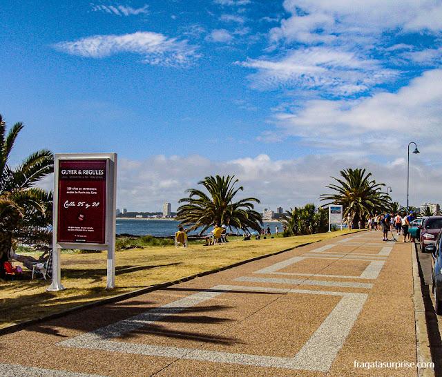 Orla de Punta del Este, Uruguai