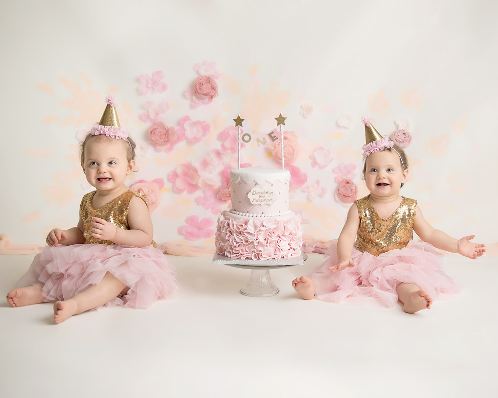 One year milestone photos of twins cake smash Chicago Area Photographer