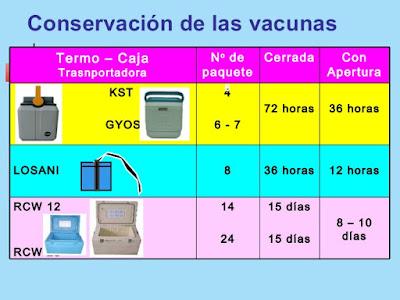 tipos termos vacunas tiempo conservacion frio numero paquetes frios