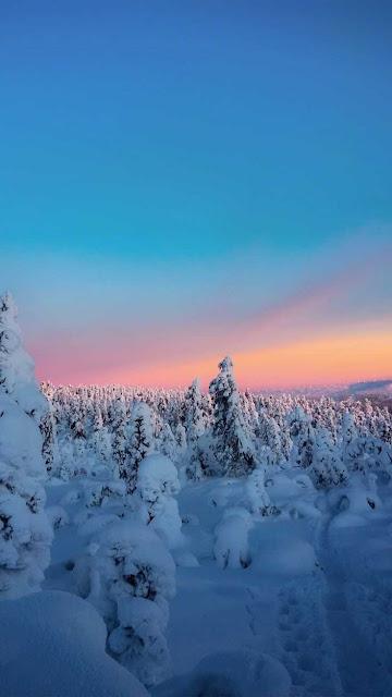 winter wallpaper iphone