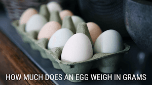 How Much Does An Egg Weigh In Grams - 2021