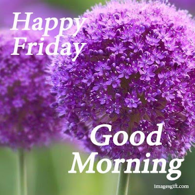 friday good morning images with flowers