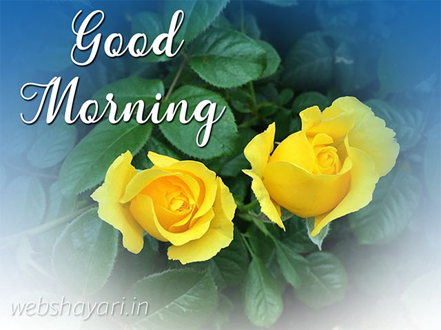 yellow rose good morning images