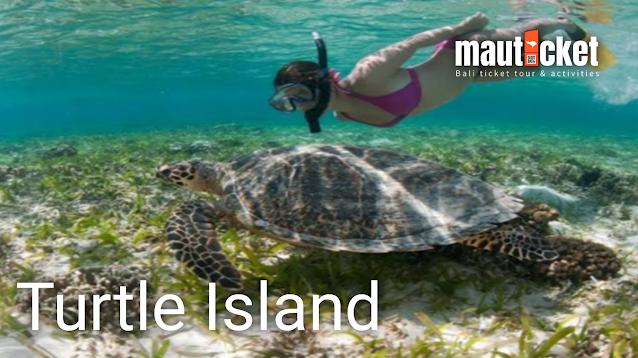 www.mauticket.com