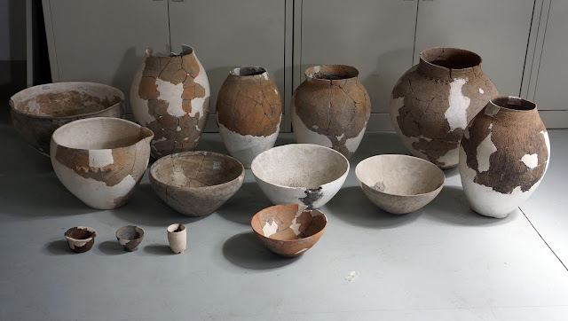 Neolithic pottery sherds from China reveal alcohol production techniques