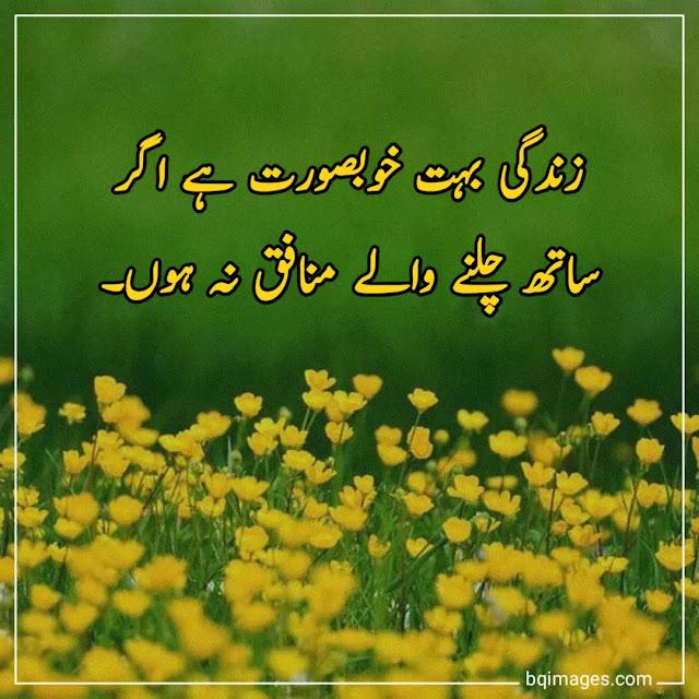 life quotes in urdu 2 lines