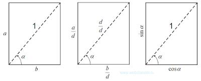 Синус и косинус. Синус и косинус в прямоугольнике. Математика для блондинок.