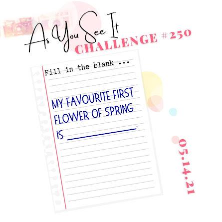 challenge 250