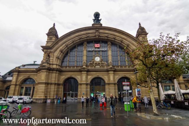 Hauptbahnhof in Frankfurt am Main - Blog Topfgartenwelt