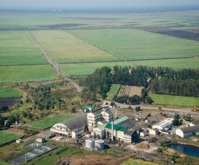 Mozambique : l'île Maurice va exploiter des terres mises en concession en 1999