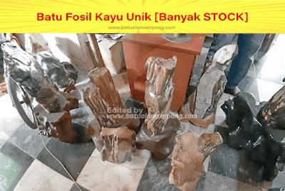 batu fosil kayu untuk pajangan ruangan rumah