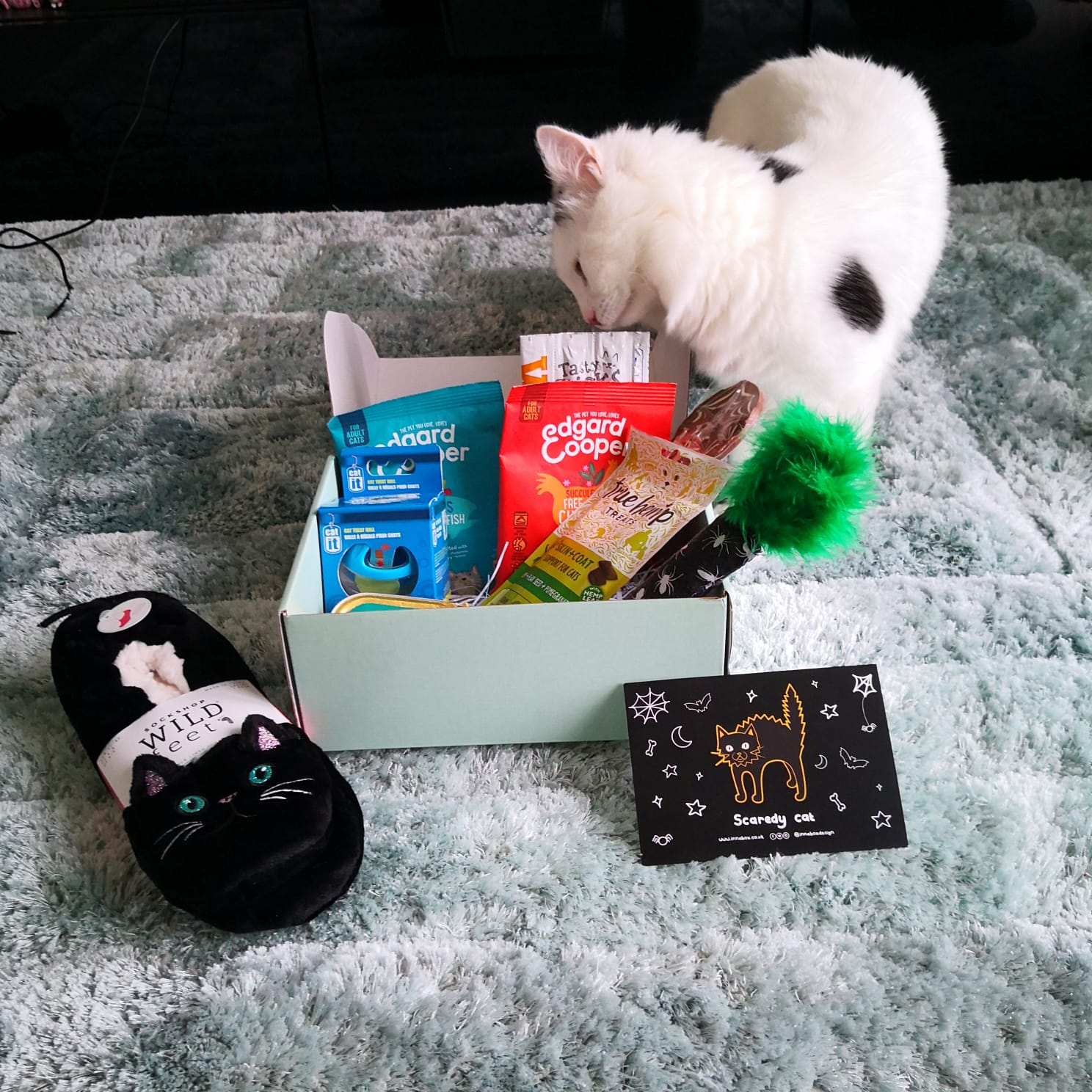 Gus and Bella Subscription Box