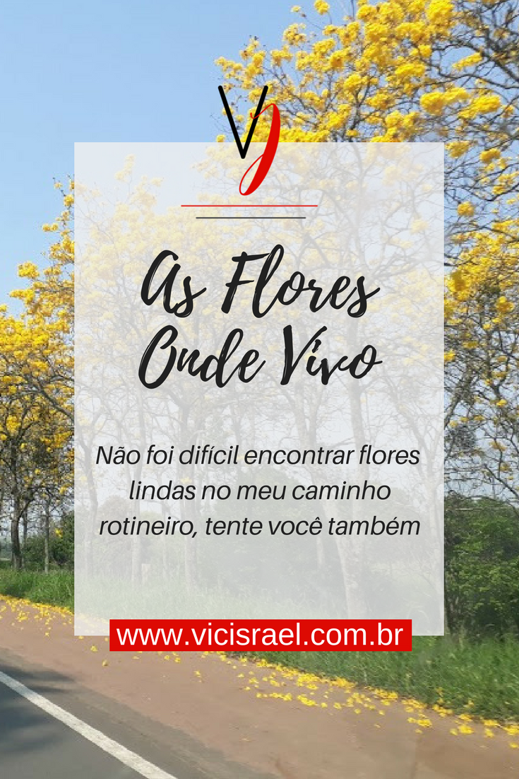 AS FLORES ONDE VIVO - VIC ISRAEL