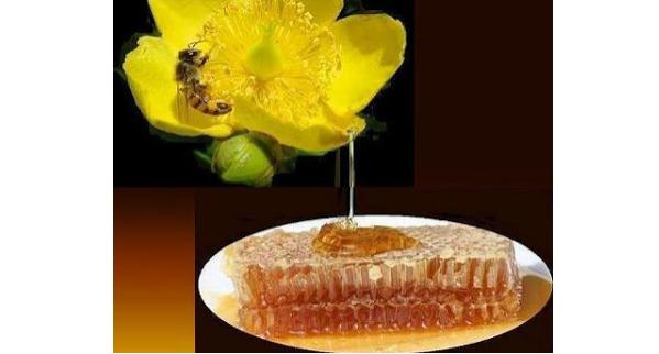 Η Ο.Μ.Σ.Ε προειδοποιεί τους καταναλωτές: Μην αγοραζετε μελι απο πλανοδιους