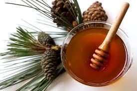 Πωλείται μέλι Πεύκου από την βόρεια Εύβοια