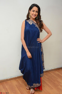 Pragya Jaiswal in beautiful Blue Gown Spicy Latest Pics February 2017 039.JPG