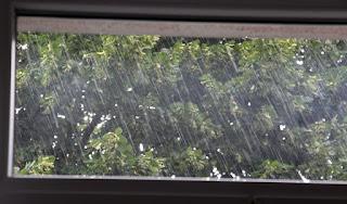 Just a little bit of rain