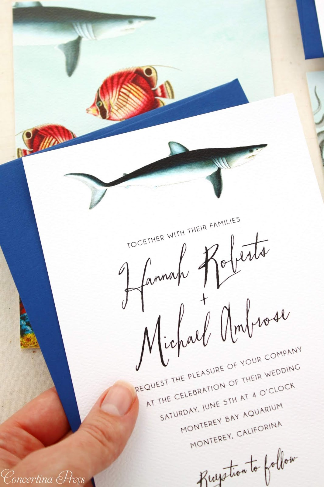 Shark Wedding Invitation Set featuring under the sea illustrations perfect for your aquarium wedding