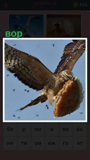 в воздухе летит птица вор, которая в клюве несет кусочек пирога