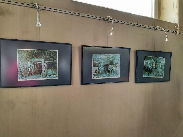 ekspozycja praca koni w kopalni soli Bochnia