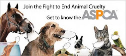 link to the ASPCA