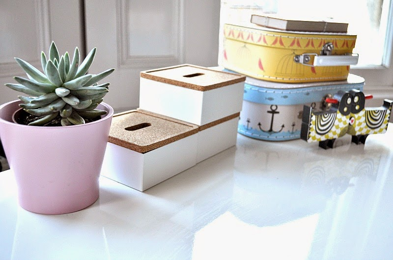 Succulents and desk tidy pots from Ikea deculttering desk tips