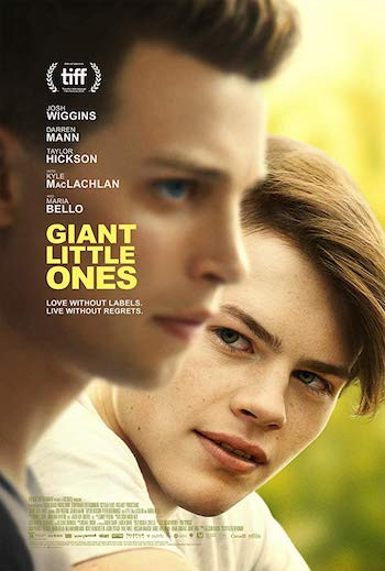 Giant Little Ones 2019 English WEB-DL 300Mb 480p ESub