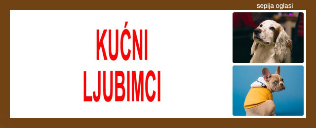 KUĆNI LJUBIMCI SEPIJA OGLASI - 9.