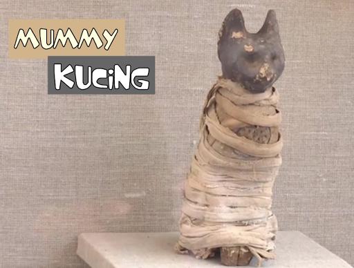 Mummy Kucing