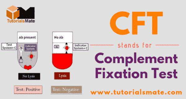 CFT Full Form