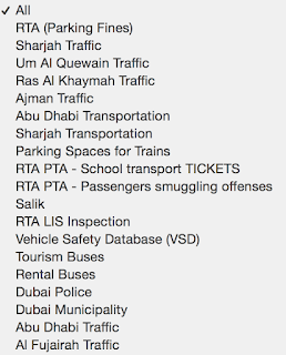 types of fine we can check in dubai police traffic fine system
