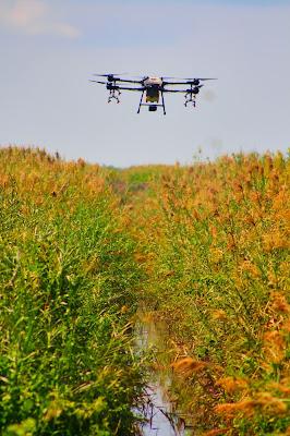 jasa survey pemetaan lahan perkebunan drone spray