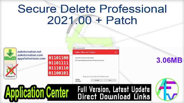 Secure Delete Professional 2021.00 + Patch