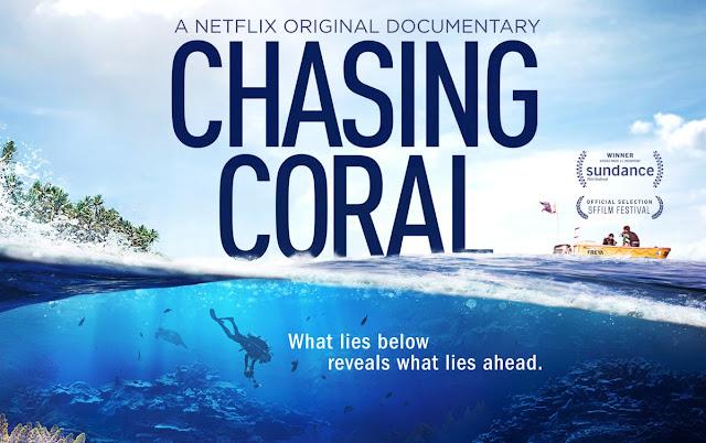 Dokumentar om korallrevene og havets helse. Foto: Chasing coral