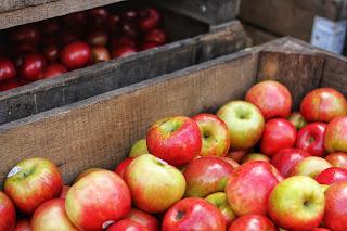 فوائد التفاح على الريق للتنحيف