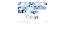 Artikel/Postingan Agar Cepat TerIndeks Google ini Caranya