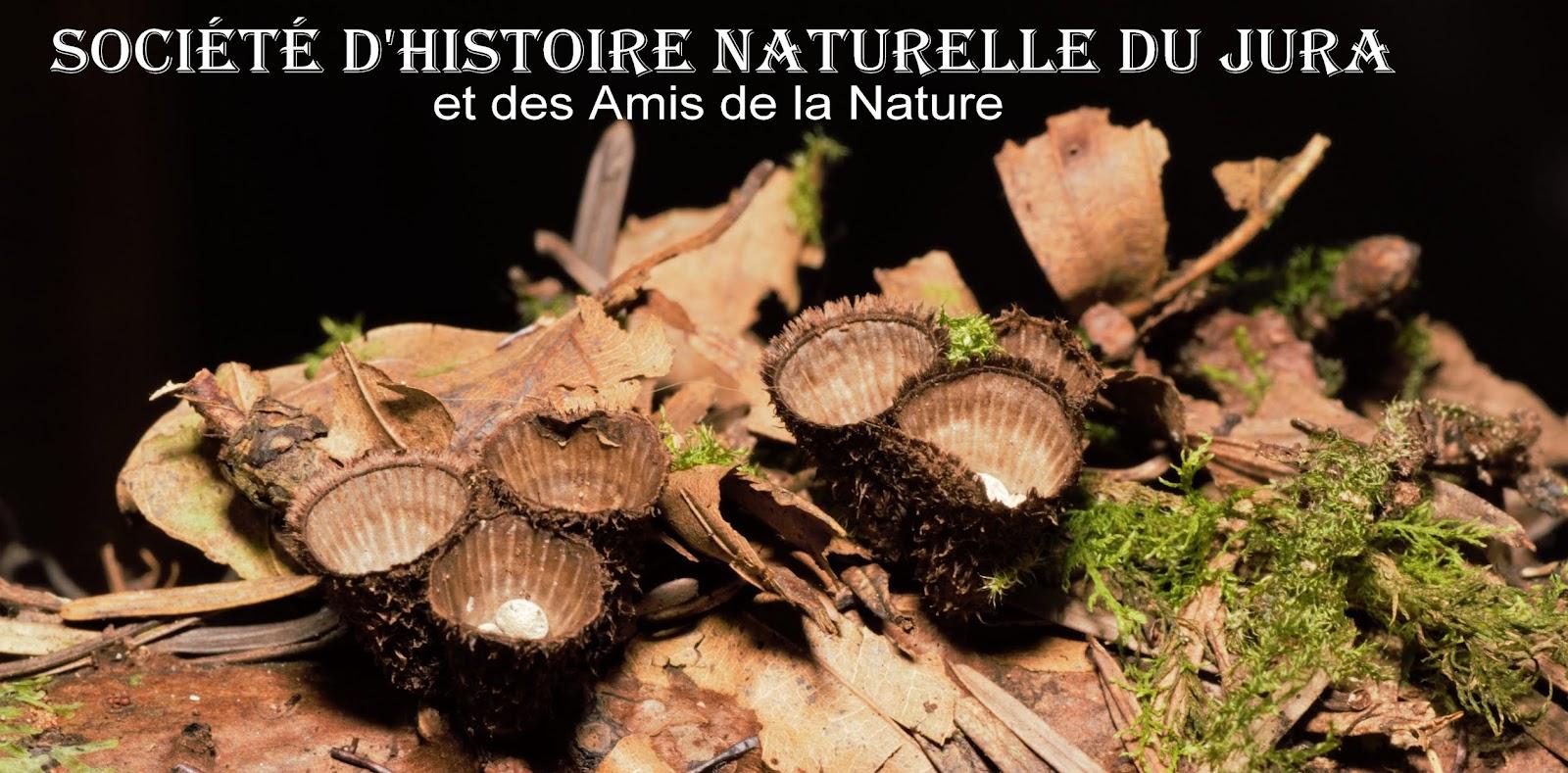 SHNJ. SOCIÉTÉ D'HISTOIRE NATURELLE DU JURA et des Amis de la Nature