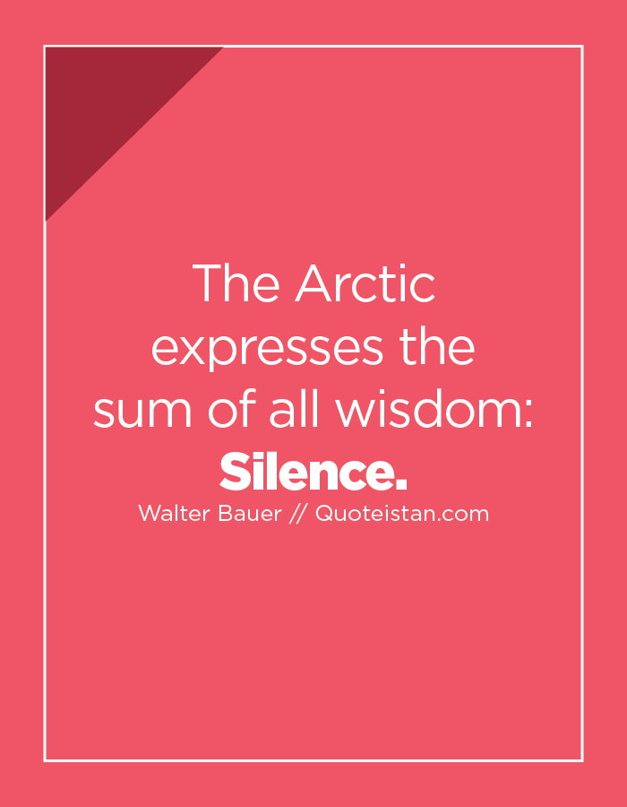 The Arctic expresses the sum of all wisdom: Silence.
