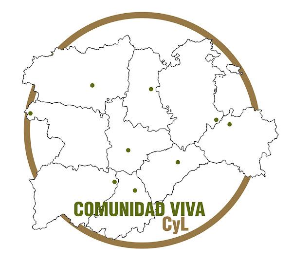 comunidad-viva-cyl