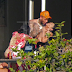 Chris Brown grabs a woman by the throat... but they claim it's horseplay