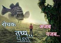 Rochak Tathya Facts in Hindi